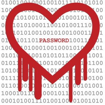 Heart Bleed Bug & Passwords
