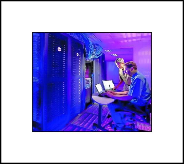 A botnet master oversees botnet activity