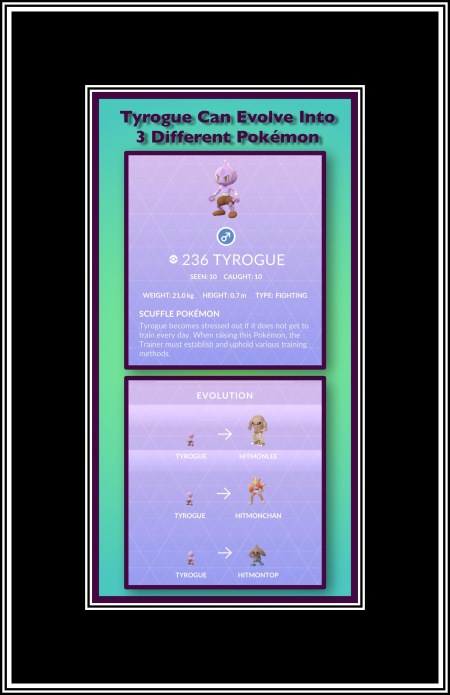 One Pokémons Evolution Course
