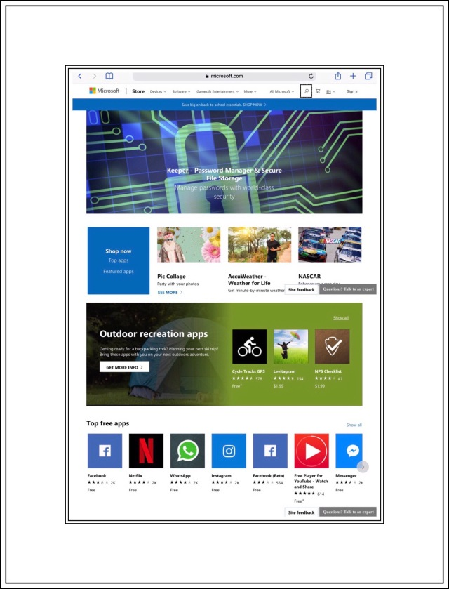I'm able to access the Windows Store from my iPad too.