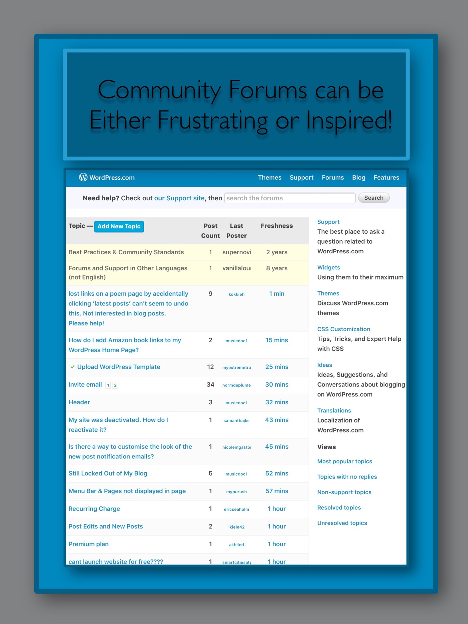 Examples of the kinds of forum questions found at the WordPress Community Forums
